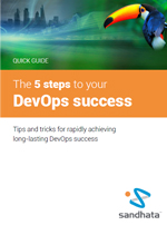 The 5 Steps to DevOps Success